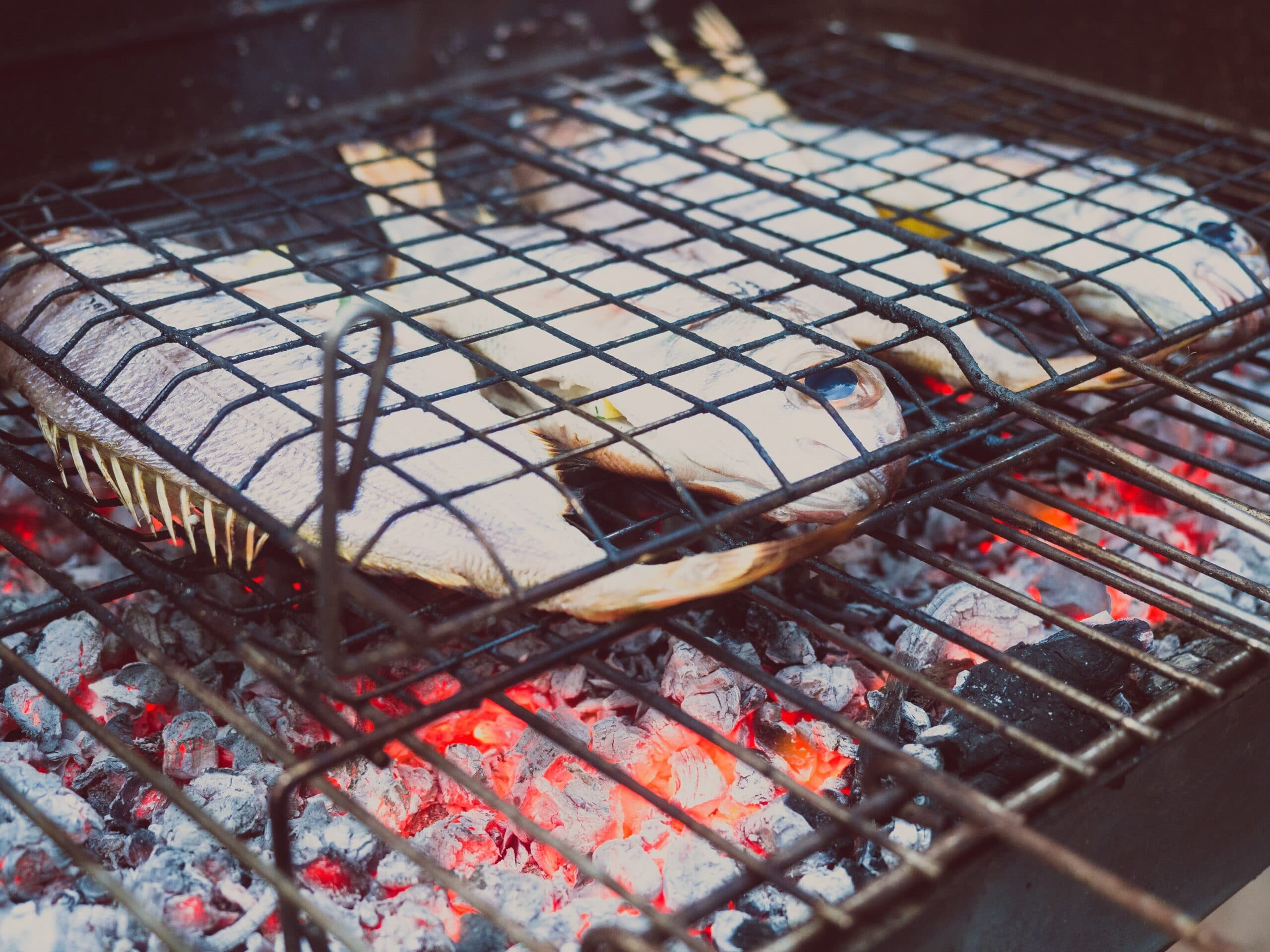 shallow focus photo of fish grilling