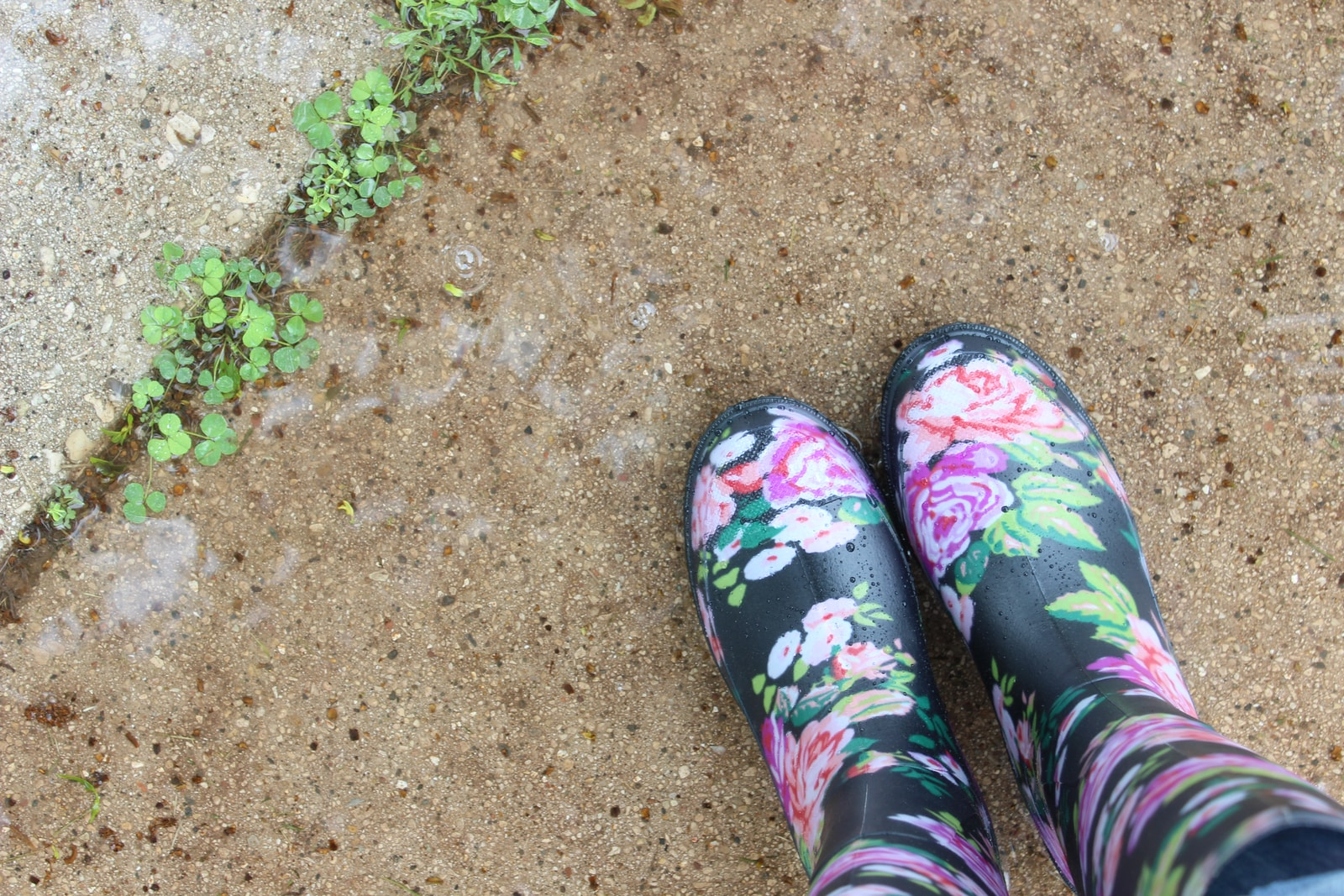 pair of black-and-multicolored floral boots