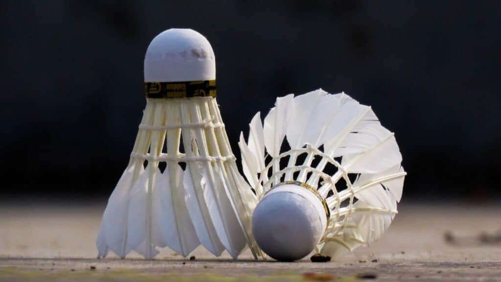 white bird figurine on white sand
