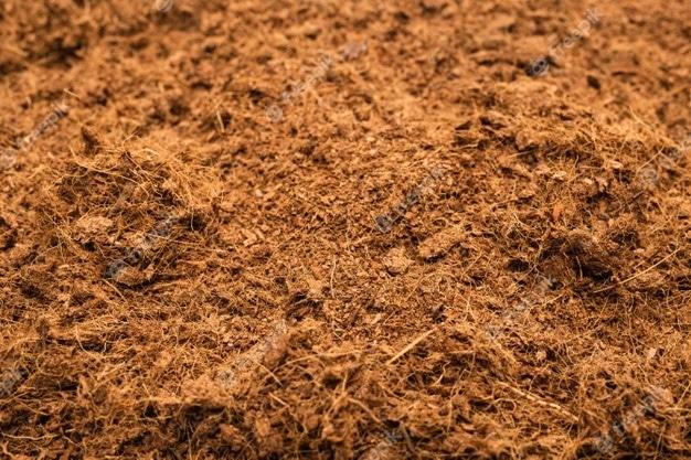 Coconut chip mulch