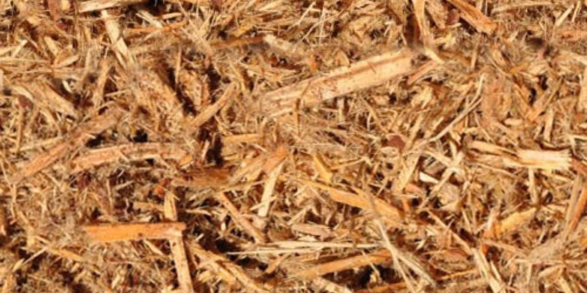 Cypress tree mulch