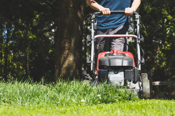 gas Lawn Mower