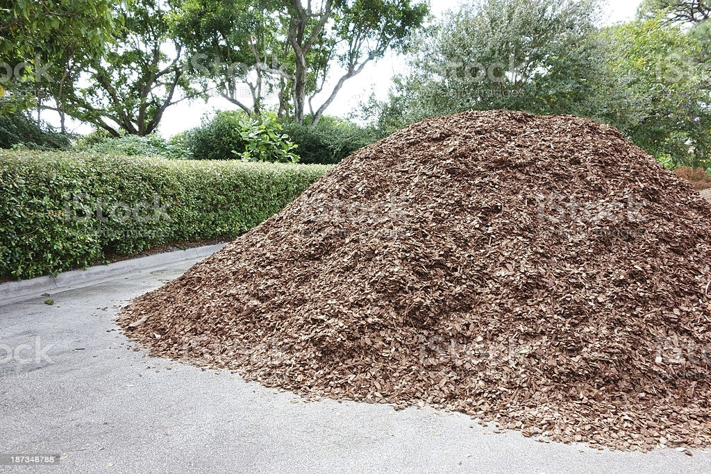 old mulch